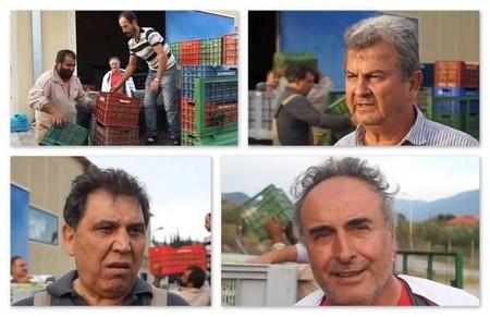 Εξαιρετική η φετινή παραγωγή ελιάς στα Ίμερα (video)