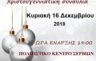 Η Χριστουγεννιάτικη συναυλία του Δημοτικού Ωδείου Σερβίων
