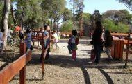 ΟΑΕΔ: Ξεκίνησαν οι αιτήσεις για τις παιδικές κατασκηνώσεις - Όλα όσα πρέπει να ξέρουν οι δικαιούχοι