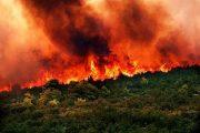 Ενημέρωση κοινού σχετικά με προληπτικά μέτρα έναντι πυρκαγιάς
